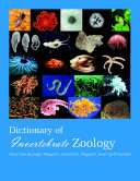Dictionary of Invertebrate Zoology --Paperback