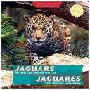 Jaguars and Other Latin American Wild Cats / Jaguares y otros felinos de Latinoamérica