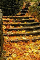 Colorful Autumn Leaves on Stone Steps in a Park Journal