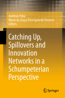 Catching Up  Spillovers and Innovation Networks in a Schumpeterian Perspective