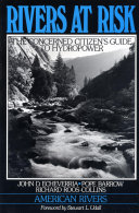 Rivers at Risk Pdf/ePub eBook