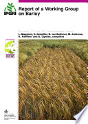 Report of a Working Group on Barley