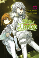 A Certain Magical Index  Vol  22  light novel