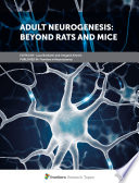Adult Neurogenesis  Beyond Rats and Mice