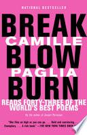 Break  Blow  Burn Book