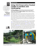 Using CCA Preservative Treated Lumber in Gardens and Landscaping