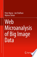 Web Microanalysis of Big Image Data Book