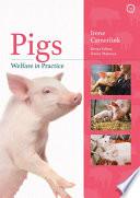 Pigs Welfare in Practice