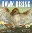 Hawk Rising Pdf/ePub eBook
