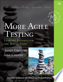 More Agile Testing  : Learning Journeys for the Whole Team