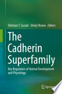 The Cadherin Superfamily