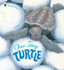One Tiny Turtle Book