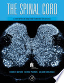 The Spinal Cord Book PDF