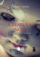 Creatura Nova Sparks of a Creative Destruction