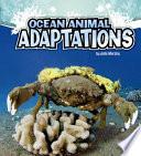 Ocean Animal Adaptations