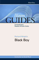 Black Boy ebook