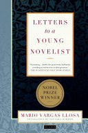 Letters to a Young Novelist ebook