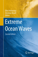 Extreme Ocean Waves Pdf/ePub eBook