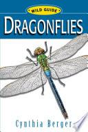 WG  Dragonflies