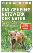 Das geheime Netzwerk der Natur  : Wie Bäume Wolken machen und Regenwürmer Wildschweine steuern