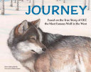 Journey Book PDF