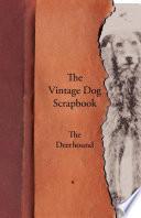 The Vintage Dog Scrapbook   The Deerhound