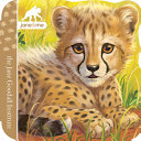 Cheetah Book PDF