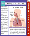 Respiratory System  Speedy Study Guides