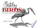 Sketching Birds