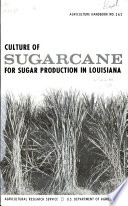 Culture of Sugarcane for Sugar Production in Louisiana
