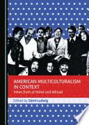 American Multiculturalism in Context Book