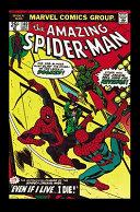 Spider-Man banner backdrop