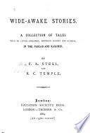 Wide Awake Stories