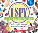 I Spy Little Bunnies Book