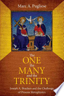 The One  the Many  and the Trinity Book PDF