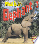 What is an Elephant?