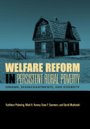 Pdf Welfare Reform in Persistent Rural Poverty Telecharger