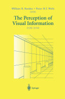 The Perception of Visual Information Book