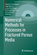 Numerical Methods for Processes in Fractured Porous Media Book