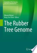 The Rubber Tree Genome