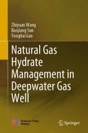 Natural Gas Hydrate Management in Deepwater Gas Well