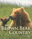 Into Brown Bear Country