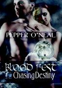 Blood Fest: Chasing Destiny ebook