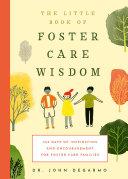 Foster Care Wisdom