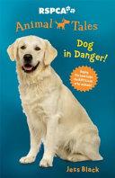 Dog in Danger!