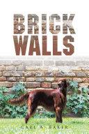 BRICK WALLS Pdf/ePub eBook