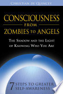 Consciousness from Zombies to Angels
