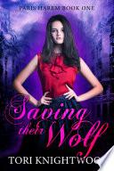 Saving Their Wolf  Paris Harem   1