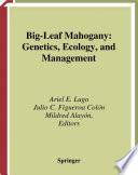 Big-Leaf Mahogany