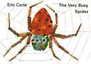 THE VERY BUSY SPIDER CD1            MLL BOARDBOOKSET